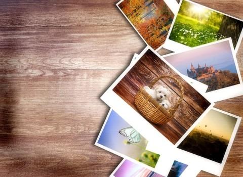 photos-1167847_640
